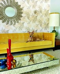One of the few things I'm keeping, my Luxe Yellow Velvet sofa by American Leather. Love it!