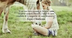 Equestrian quote Force de cheval - Art Of Equitation My Horse, Horse Riding, Citations Photo, Animals And Pets, Cute Animals, Equestrian Quotes, All About Horses, Horse Quotes, Horse Photography