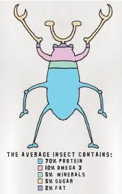 Bugs are Paleo, Bro Edible Insects, Bugs And Insects, Cricket Farming, Bug Snacks, Crickets, Communication Design, Rag And Bone, Dietitian, Bro