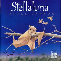 Stellaluna was my favourite book as a kid, and I loved the message of learning to be yourself. It has great vocabulary words for students, and would be a good jumping off point to learn about animals.