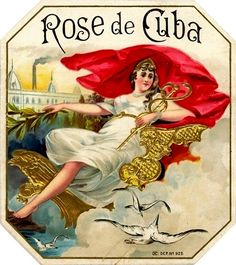 Rose de Cuba Vintage Cigar Label Vintage International Cigar Box Art