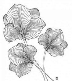 Ideas Doodle Art Painting Zentangle Patterns For 2019 Art And Illustration, Pattern Illustration, Doodle Patterns, Zentangle Patterns, Doodle Ideas, Art Patterns, Zentangle Drawings, Art Drawings, Zentangles