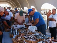 The tunas and the fish market | EASY TRAPANI .com