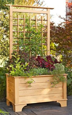 driveway/front yard - planter box with trellis (note copper pipe)