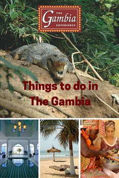 Whether you jet over to immerse yourself in The Gambia's world-class birdwatching, its golden sandy beaches or its infectious culture and vibrant atmosphere, there's always something ready to captivate holidaymakers visiting The Gambia for the first time. Here's our top 10 things to do in The Gambia for those embarking on their first visit to this magical country.