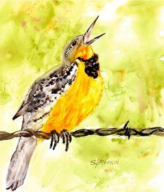 OriginalBirdPaintings: Art and Paintings - Meadowlark Birds