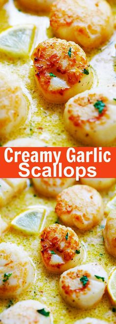 Creamy Garlic Scallops - easiest, creamiest and best scallop recipe ever. Takes only 15 mins, better than restaurants and much cheaper   rasamalaysia.com