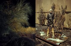 Baron & Baron / Photography Fabien Baron, Templer, Stylists, Artist, Photography, Painting, Graphics, Fotografia, Photograph