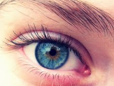 Blue Eye Iris | Anatomy Picture Reference and Health News