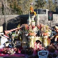 Pasadena's Biggest Day: Rose Bowl Parade and Rose Bo...