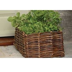BURGON & BALL GYO/HOHPN Natural Willow Herb Planter