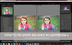 LR4 - Fix white balance