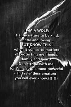 Many wolf hunters think wolves are these wretched, dangerous beasts. Wolves are usually weary of people and actually fear mankind. When they attack it is to protect themselves or their family Great Quotes, Quotes To Live By, Me Quotes, Motivational Quotes, Inspirational Quotes, Sister Quotes, Funny Quotes, Warrior Quotes, She Wolf