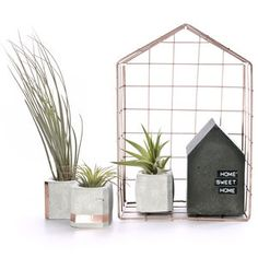 Set Of Three Small Concrete Copper Pots - on trend: indoor gardens