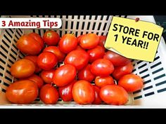 How To Store Tomato For Long Time | Store Tomatoes For Months | How to Store tomato in freeze - YouTube Freezing Tomatoes, Preserving Tomatoes, Pureed Food Recipes, Indian Food Recipes, Tomato Puree Recipe, How To Store Tomatoes, Frozen Youtube, Tag Store, Italian Dressing