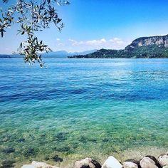 Lungolago di Garda #Repost @vegzeppelin  Morning walk  #lakegarda #gardasee #lagodigarda #garda #lake #nature #blue #colorful #sunnyday #morning #walk #morningwalk #naturelovers #myplace #homesweethome #landscape #view #amazing #stunning #water #instagarda #gardaconcierge #