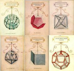 Da Vinci illustrations for De Divina Proportione Luca Pacioli, Geometric Artwork, Geometric Drawing, Geometric Designs, Geometric Shapes, Solid Geometry, Sacred Geometry Patterns, Divine Proportion, Platonic Solid