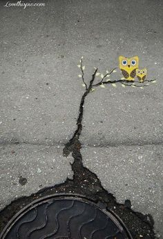 pinterest.com/fra411 #street #art - Owl street art photography colorful art graffiti street