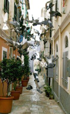 Corfu...Greek island