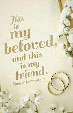 My Beloved Song Of Solomon 516 KJV Bulletins 100