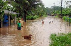 23 June 2015.  Over 450 people were evacuated in Costa Rica's Caribbean and Northern regions due to flooding from heavy rains, National Emergency Commission (CNE) reports.