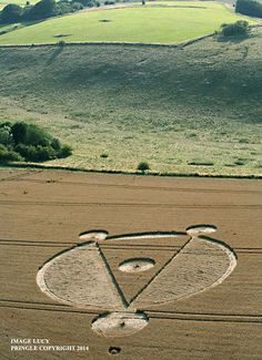 Crop Circle at Cow Down, nr East Kennett, Wiltshire, United kingdom. Reported 5th August 2014