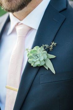 that blush tie and succulent boutonniere