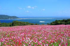 Nokonoshima Island Park, Fukuoka City, Japan