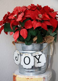 Galvanized bucket filled with poinsettias, banner with holiday word strug on twine - may use black meta in place of twine, and something more permanent than paper for banner (wood tiles?) and make it all a bit less shiny and more rustic, place near fireplace. #ChristmasDecorating #Christmas - pb≈