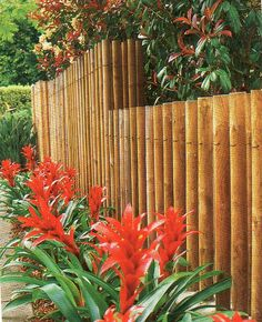 45 Stunning Bamboo Fence Decor Ideas You Can Add For Your Home - LuvlyDecor Diy Privacy Fence, Diy Fence, Fence Ideas, Garden Retaining Wall, Garden Fencing, Home Landscaping, Front Yard Landscaping, Fence Design, Garden Design