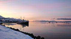#MiAmanecer: Costa de Ushuaia, provincia de Tierra del Fuego.Patagonia Argenbtina. Sensación térmica: -8°6   Foto: @SyraArgentina