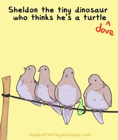 Sheldon the Tiny Dinosaur who Thinks he's a Turtle, , He hasn't quite gotten the hang of flying>>those are pigeons Sheldon The Tiny Dinosaur, Funny Cute, The Funny, Hilarious, Cute Comics, Funny Comics, Turtle Dinosaur, Dinosaur Pics, Tiny Turtle