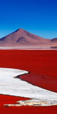 Laguna Colorada is a salt lake in Bolivia that gets its red colour from the pigmentation of algae.