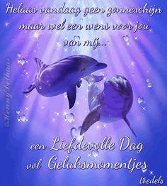 Een liefdevolle dag vol geluksmomentjes:...www.facebook.com/plaatjesvanhennydelhaas