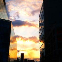 Sunset <3