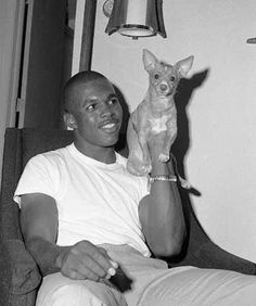 Empire of the Chihuahua: Classic Hollywood Football Hall Of Fame, College Football, Brian's Song, Songs, Gale Sayers, Black Like Me, Hello To Myself, Sports Pictures, Chi Chi