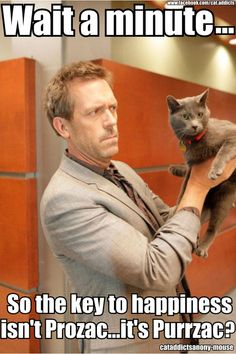 This one is pretty lame, but there was no way I was going to look at a picture of Hugh Laurie holding a cat and not post the picture.