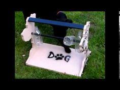 DIY cheap Dog Toy / Treat dispenser / Dog puzzle / Boredom breaker 3