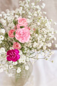 Red Carnations and Wax Flowers Dianthus Flowers, Wax Flowers, Flowers Nature, Beautiful Flowers, Happy Flowers, Floral Centerpieces, Flower Arrangements, Centrepieces, Virtual Flowers