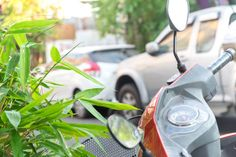 motorcycle mileage and bamboo leaves with blur car park background