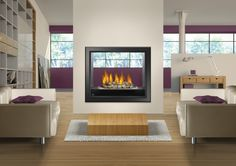 HD81 Napoleon Gas Fireplace
