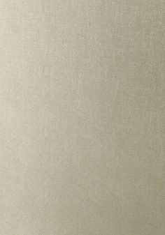 WESTERN LEATHER, Metallic Pewter, T57159, Collection Texture Resource 5 from Thibaut