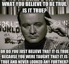 What you believe to be true, is it true? Or do you just believe that it is true because you were taught that it is true and never looked any further? Terre Plate, Thing 1, Just Believe, Atheism, Intj, Wise Words, Quotations, Things To Think About, Life Quotes