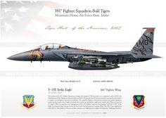 """F-15E """"Strike Eagle"""" 391FS """"Bold Tigers"""" USAF YC-07"""