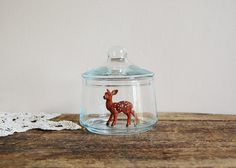 tiny things in even tinier glass jars?! weird + cute + whaaaat?