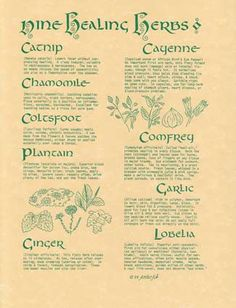 Nine Healing Herbs - see this board for more info on herb healing