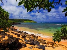 Hawaii... drinks with little umbrellas on the beach, hiking, surfing, biking. yes, please!