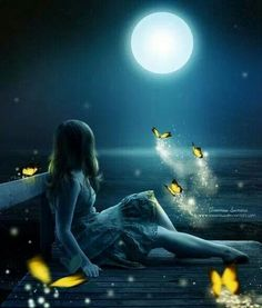 Magical moonlight with fairies