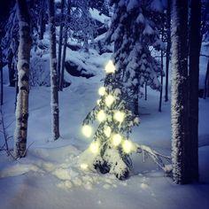 God jul och Gott nytt lysande år. Se till att synas nästa år.  #reflex #reflexprodukter #brightstuff
