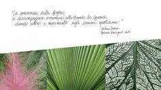 Materie intelligenti - foglie
